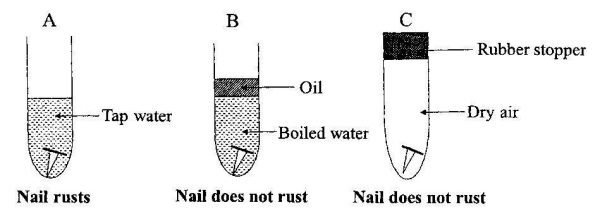 2009-Integrated-Science-paper-2-question-1b-image
