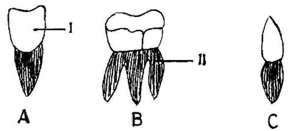 2011-Integrated-Science-paper-2-question-1c-image