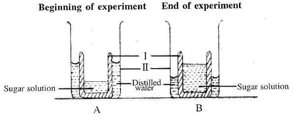 2013-Integrated-Science-paper-2-question-1a-image
