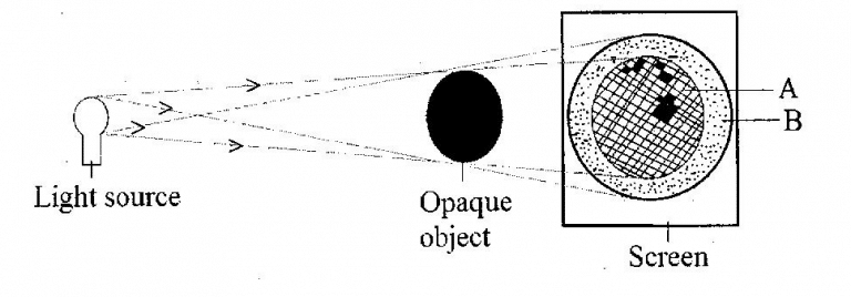 https://galaxypassco.com/wp-content/uploads/2020/08/2019-Integrated-Science-paper-2-question-2b-image