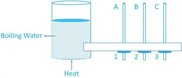 2019-Integrated-Science-paper-2-question1d-image
